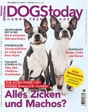 Dogs today