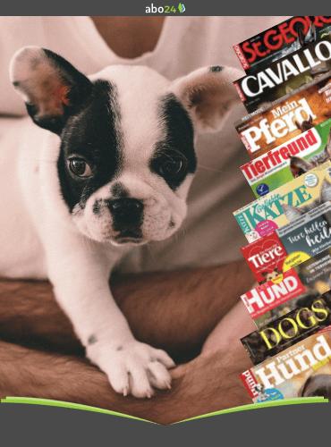 Tiermagazine im Abozum Welttierschutztag 2021