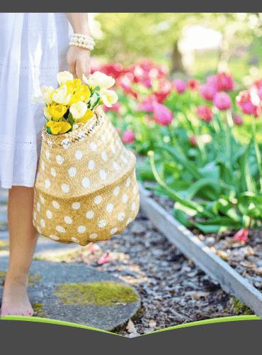 DPV Frühjahrskampagne mit Amazon-Gutschein bis 65,00 €