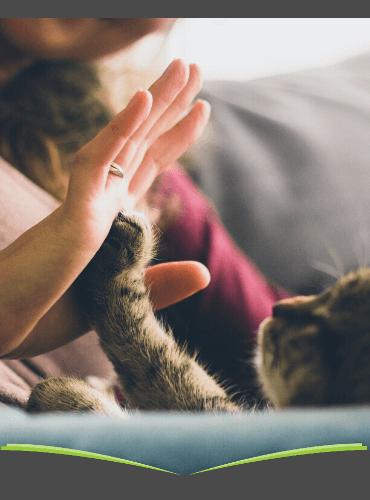 Tierzeitschriften-Abo Angebote zum Liebe-Dein-Haustier-Tag